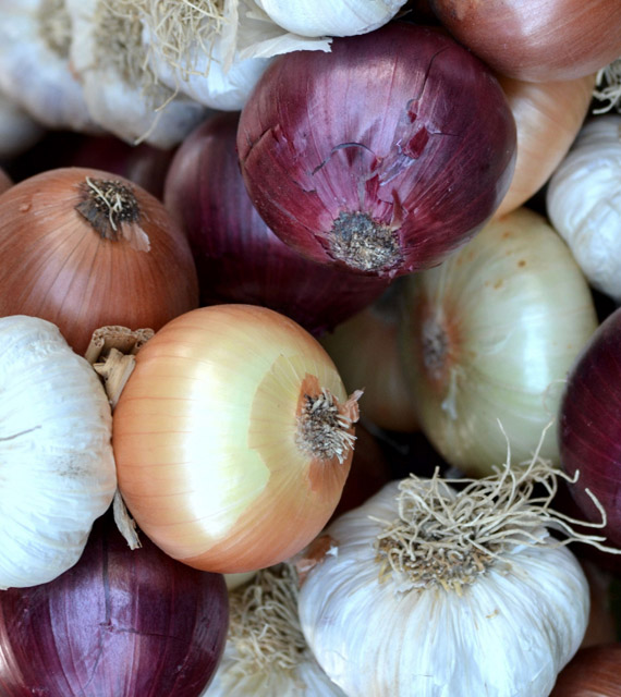 Onions from Peakpx